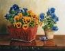 blaue-und-gelbe-stiefmuetterchen