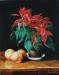 89weihnachtsstern-mit-aepfeln-2008